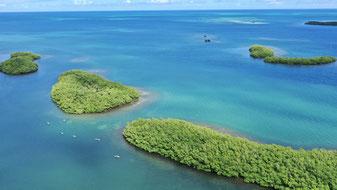 Tom Paddle Evasion   Excursion paddle   Ilet Blanc   Guadeloupe