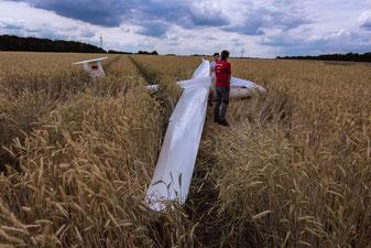 Eine ASW 19 im Kornfeld nach der Außenlandung. Das Flugzeug drehte sich nach dem Aufsetzen um 90 Grad.