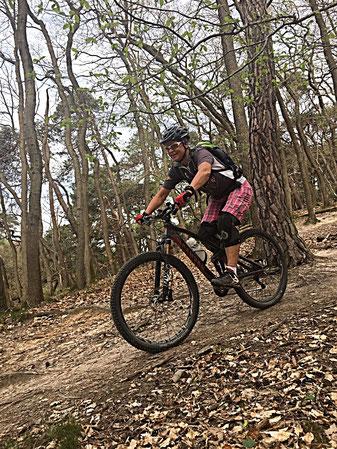 Mit dem Mountainbike auf dem Trail im Rheingauer Wald