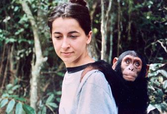 1994 Congo Pointe Noire. Je suis avec Maniongui, bébé chimpanzé orpheline