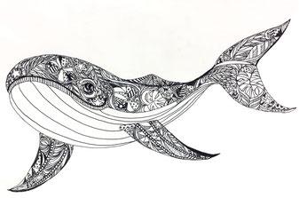 くじら、whale