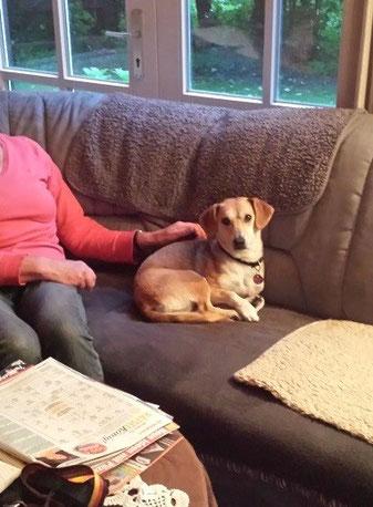 Kaja fand ihr Sofa in Ahaus.