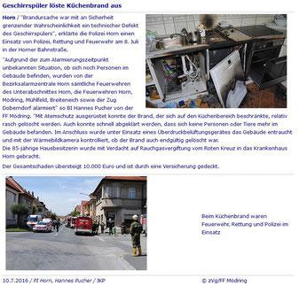 Horner Internetzeitung pfleger.at vom 10.07.2016