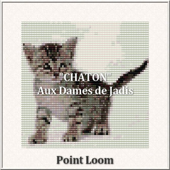 cat-chaton-picture-pattern-tapis-tapestry-miyuki-delica-seed beads-DIY-peyote-loom-even count-instant downlaod-auxdamesdejadis.com