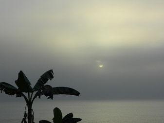 夕方桜島の灰が江口まで!沖が見えないぐらい視界が悪く辺り一面真っ黒くなりました。結構大きな噴火だったのでは??