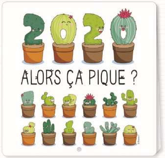 2020 calendar illustrated by Barbara FORMOSA - 30 x 30 cm
