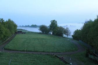 Morgenstunden im Nebeltal