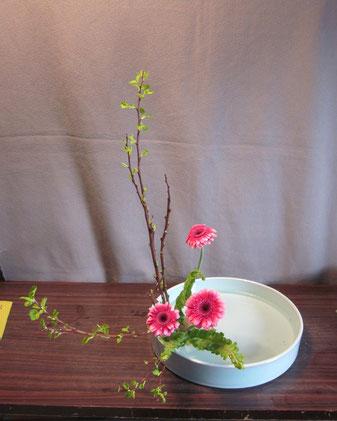2013.3.9 直立型   by Atsukoさん