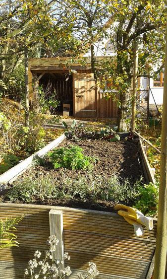 Herbst im Korfmacher Garten: die Chefin zeigt Arbeiten am Hochbeet zur kalten Jahreszeit. Korfmacher garten 2018