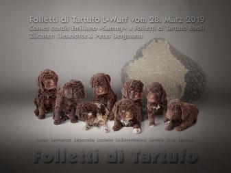 Comes cordis Emiliano »Sammy« x Folletti di Tartufo Eboli