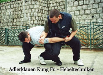 Hebeltechnik des Aderklauen Kung Fu Stils