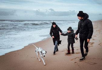 Sylt mit Hund – ein Klassiker im Norden