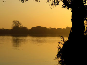 The Gambia River at Janjanbureh