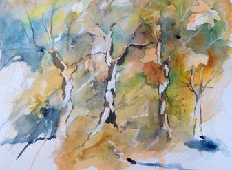 Aquarellbild, Herbstwald Aquarellieren, Birken, Blätter, Herbst, Aquarell, Aquarell malen, Malen lernen.