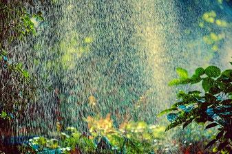 Garten Dusche