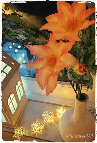 Weihnachten, Dekoration, Fenster, Fensterbrett, Laterne, Lichterkette, Sterne, Blüten, Licht, leuchten