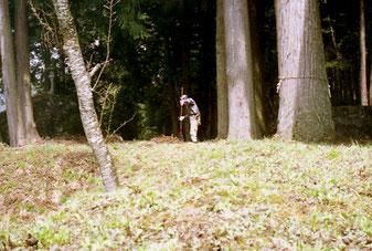 der Frühjahrs-Putz beginnt weit im Wald
