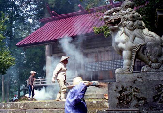der Tempel-Wächter wird gesäubert