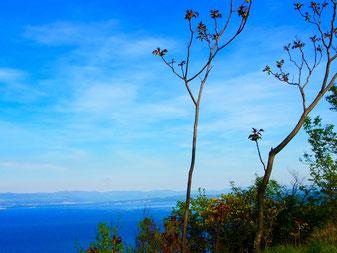 mit einer traumhaften Aussicht auf die Bucht von Opatija