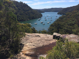 Kur-ring-gai National Park