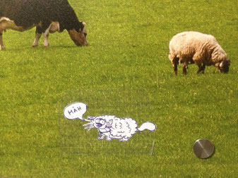 Katze als Schaf verkleidet
