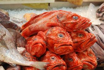 これからもずっと美味しい魚を食べ続けたいものですが・・・。 CC BY-NC 2.0 / Kristof
