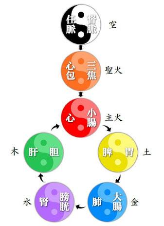 七行経絡図