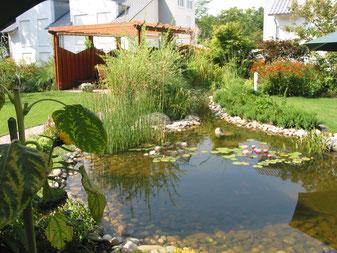 Schwimmteichbau und Wasseranlagen