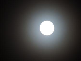 夜には満月も雲越しに望めました