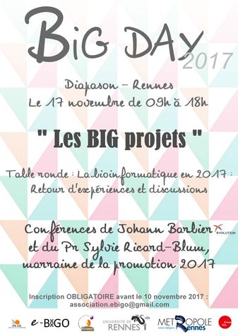 Affiche du BIG Day édition 2017