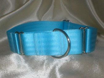 Martingale, Halsband, 4cm, Gurtband eisblau