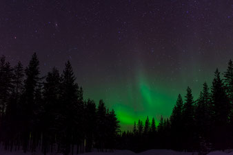 Reisebericht Lappland
