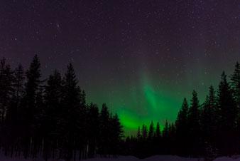 Reisebericht Lappland 2017