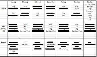 Beispiel Ernährungsplan Wochenplan
