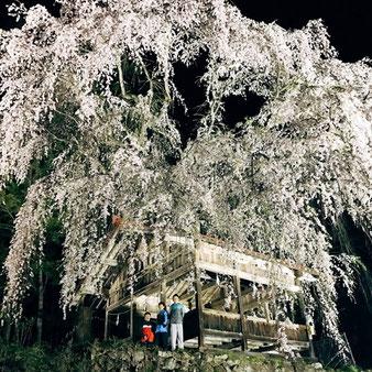 浅井地区 神明神社