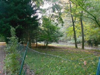 Bures/Y. / Pré aux Chênes : l'étang du parc de la Vierge
