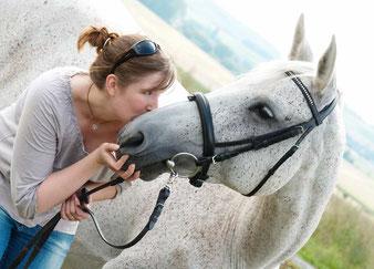 Pferdebilder in der Natur