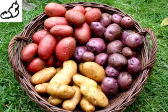 Obst und Gemüse, Fischerei Berkholz