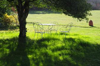 Der Tisch unter dem Buchsbaum