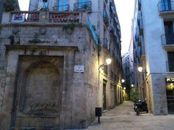 Гуси Кафедрального Собора Барселоны.