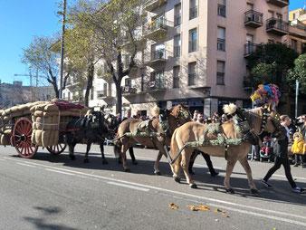 Январь, Праздники в Барселоне.
