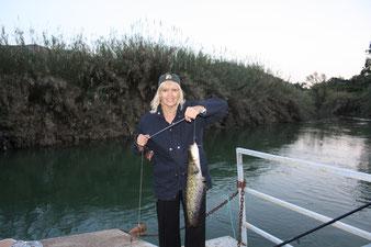 Ловим рыбу, в данном случае сомов