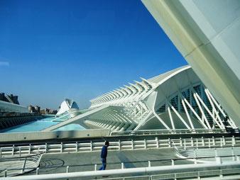 Calatrava. Valencia