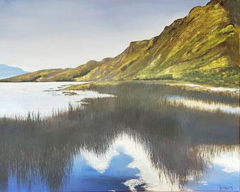 Moorlandschaft Irland, Berge, Wassser,braun, gelb, blau, grün, Schilf und andere Wasserpflanzen