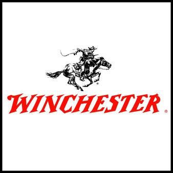 Outdoor Survival Messer Fixe feststehende Klingen Winchester Prepper Bushcraft Selbstversorger