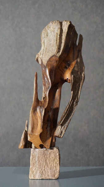 Holz vom Rhein