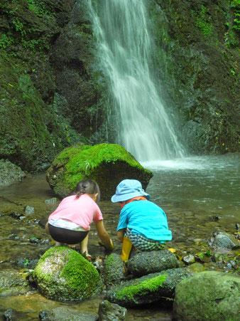 畑のすぐそばにある滝。暑い夏はここで一休み。インスピレーションを授かる貴重な場所です。