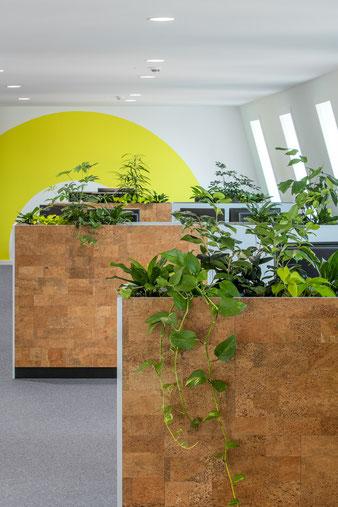 Дизайн офис в Москве