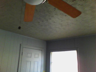 Ceiling appearance with out Infrared -Advantis Home Inspection, PLLC