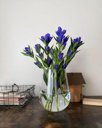 透明なガラスの花瓶。底が丸く膨らみ、口に向けてすぼまった、大きな蕾のような形をしています。薄くて繊細なガラス。すっきりしたモダンな雰囲気の中にかわいさも感じられます。フラワーベース 花器 花 生ける 飾る ディスプレイ デコレーション ポーランド 海外 外国 輸入 クリア 手吹き ハンドメイド 手作り シンプル 個性的 インテリア おしゃれ 人気 おすすめ デザイン ブランド プレゼント